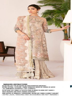 light brown georgette fabric embroidery work ethnic