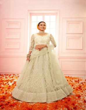 white lehenga - net with silk santin 2 layer inner with heavy quality can - can | dupatta - heavy dupatta and heavy stone work | blouse - net with silk inner fabric heavy stone work work casual
