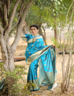 sky kanchipuram lichi silk  fabric weaving jacqaurd  work casual