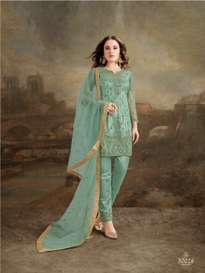 sage  green net with silk fabric embroidery work festive