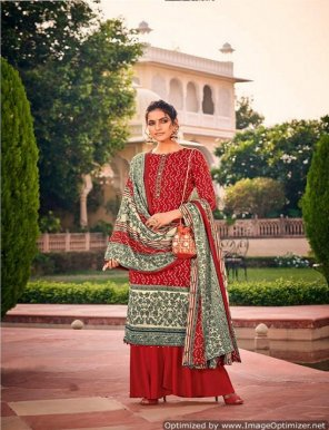 red pure pashmina fabric kashmiri embroidery  work casual