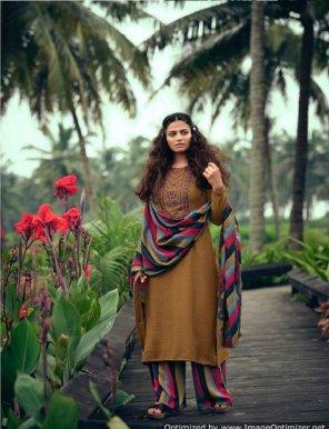 brown pure pashmina fabric heavy kashmiri embroidery work festival