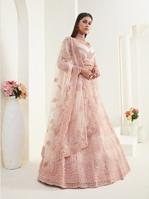 baby pink net with silk fabric embroidery work festive