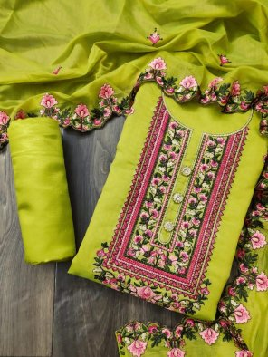 neon parrot heavy chanderi fabric embroidery neck work work festival