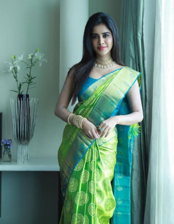 parrot soft lichi silk fabric weaving jacqaurd work ethnic